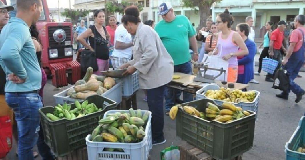 Los precios de los alimentos en Cienfuegos están disparados