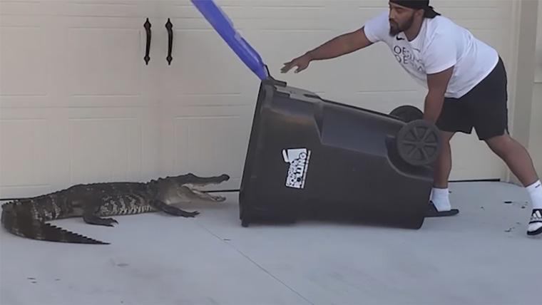 Hombre en la Florida usa latón de basura para atrapar caimán